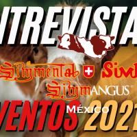 Llevará a cabo Asociación Simmental Simbrah & Simmangus eventos ganaderos